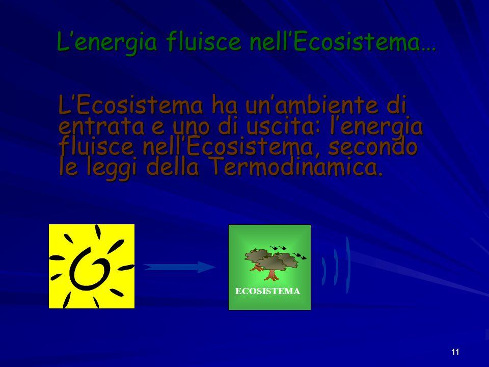 11 Lenergia fluisce nellEcosistema… LEcosistema ha unambiente di entrata e uno di uscita: lenergia fluisce nellEcosistema, secondo le leggi della Term