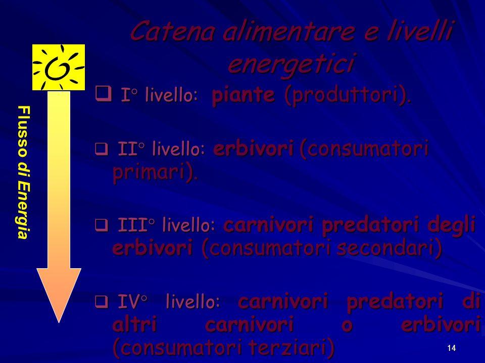 14 Catena alimentare e livelli energetici I° livello: piante (produttori). I° livello: piante (produttori). II° livello: erbivori (consumatori primari