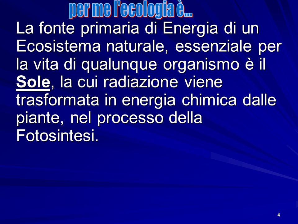 4 La fonte primaria di Energia di un Ecosistema naturale, essenziale per la vita di qualunque organismo è il Sole, la cui radiazione viene trasformata