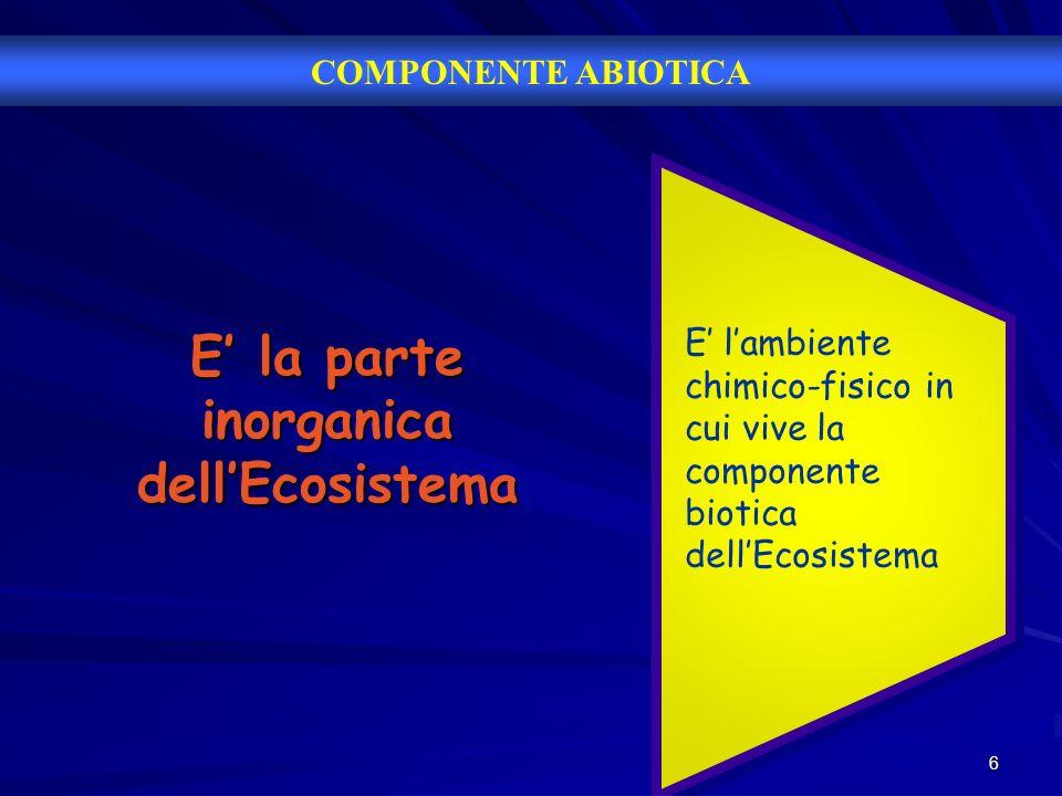 7 Ad esempio… Lacqua del mare o di un fiume.Lacqua del mare o di un fiume.