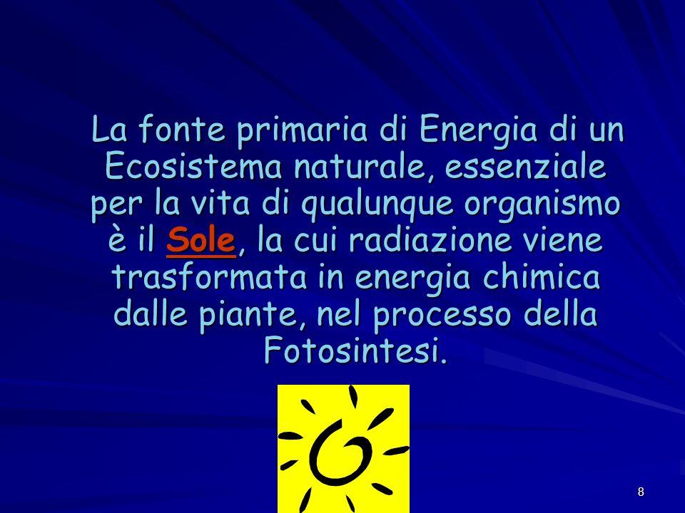 8 La fonte primaria di Energia di un Ecosistema naturale, essenziale per la vita di qualunque organismo è il Sole, la cui radiazione viene trasformata