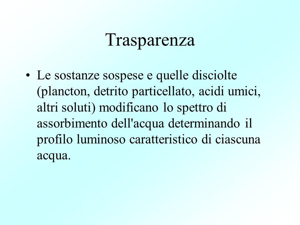 Trasparenza Le sostanze sospese e quelle disciolte (plancton, detrito particellato, acidi umici, altri soluti) modificano lo spettro di assorbimento d