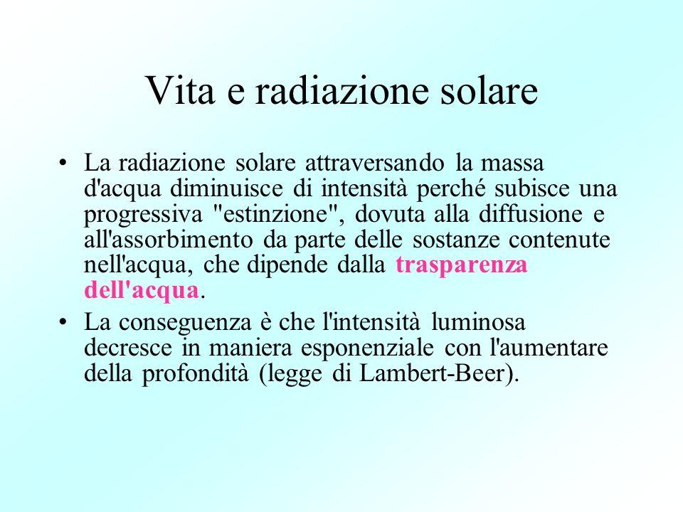 Vita e radiazione solare La radiazione solare attraversando la massa d'acqua diminuisce di intensità perché subisce una progressiva