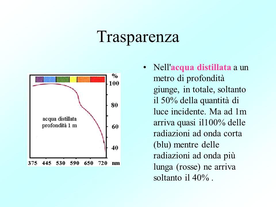 Trasparenza Nell'acqua distillata a un metro di profondità giunge, in totale, soltanto il 50% della quantità di luce incidente. Ma ad 1m arriva quasi