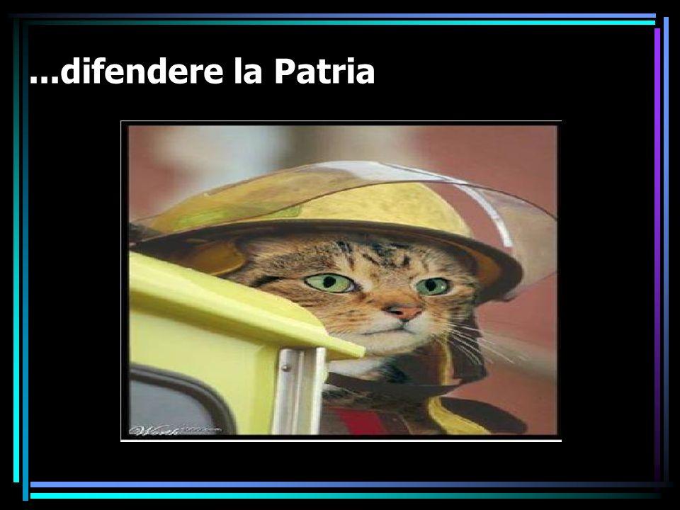 ...difendere la Patria