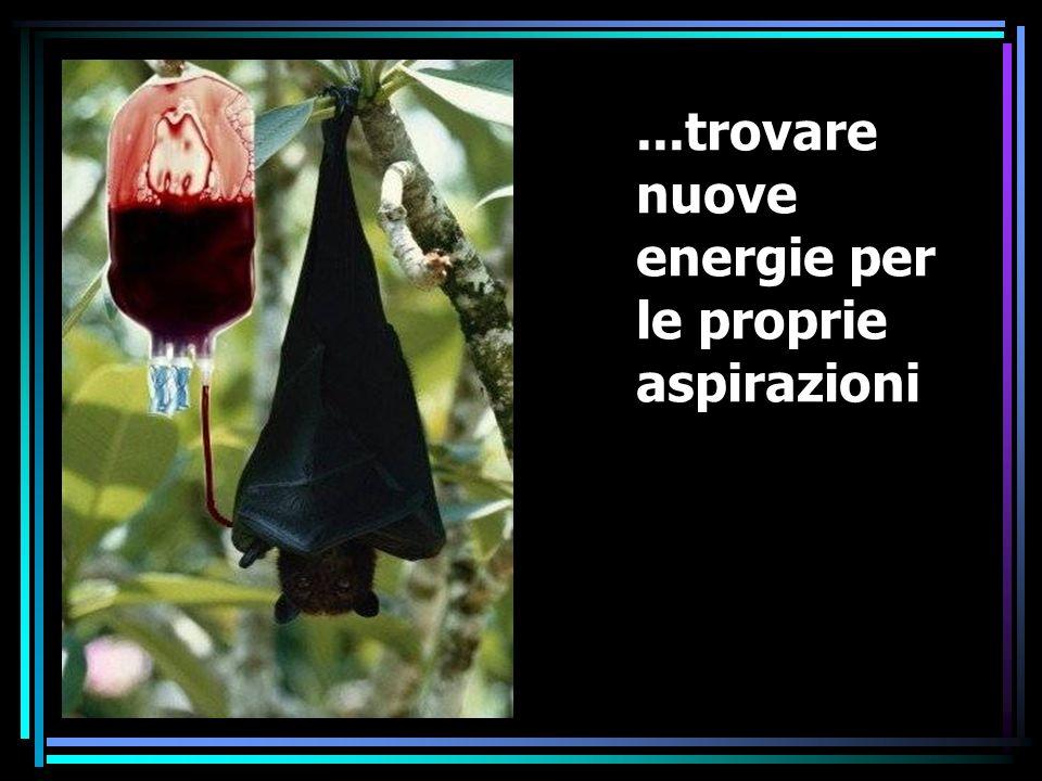 ...trovare nuove energie per le proprie aspirazioni
