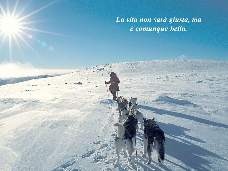pensierini Music: snowdream