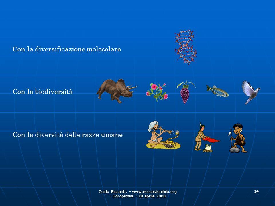 Guido Bissanti: - www.ecosostenibile.org - Soroptmist - 18 aprile 2008 14 Con la diversificazione molecolare Con la biodiversità Con la diversità dell