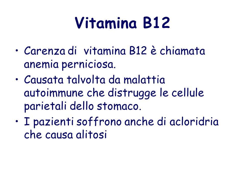 Vitamina B12 Carenza di vitamina B12 è chiamata anemia perniciosa. Causata talvolta da malattia autoimmune che distrugge le cellule parietali dello st