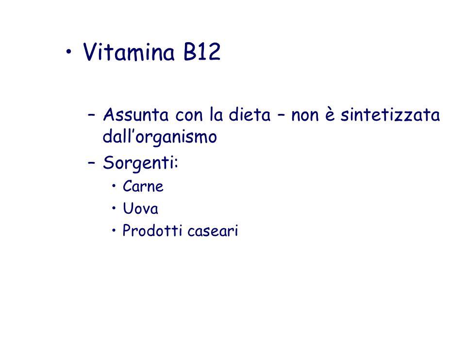 Vitamina B12 –A–Assunta con la dieta – non è sintetizzata dallorganismo –S–Sorgenti: Carne Uova Prodotti caseari