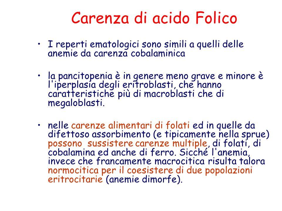 Carenza di acido Folico I reperti ematologici sono simili a quelli delle anemie da carenza cobalaminica la pancitopenia è in genere meno grave e minor