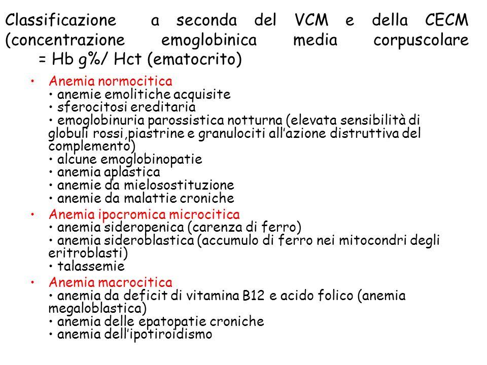 Classificazione a seconda del VCM e della CECM (concentrazione emoglobinica media corpuscolare = Hb g%/ Hct (ematocrito) Anemia normocitica anemie emo