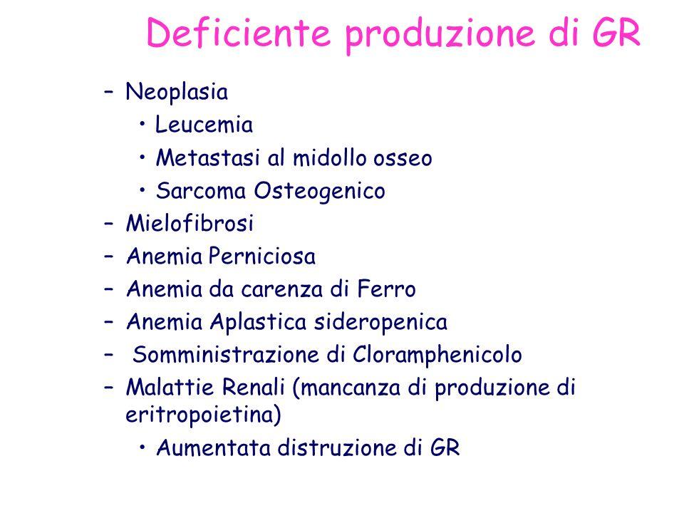 Deficiente produzione di GR –Neoplasia Leucemia Metastasi al midollo osseo Sarcoma Osteogenico –Mielofibrosi –Anemia Perniciosa –Anemia da carenza di