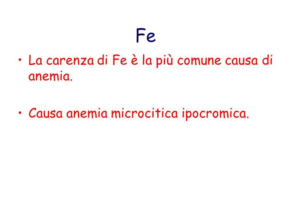 Fe La carenza di Fe è la più comune causa di anemia. Causa anemia microcitica ipocromica.