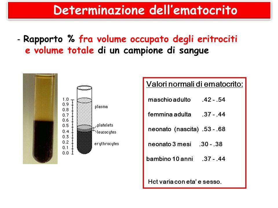 Determinazione dellematocrito - Rapporto % fra volume occupato degli eritrociti e volume totale di un campione di sangue Valori normali di ematocrito: