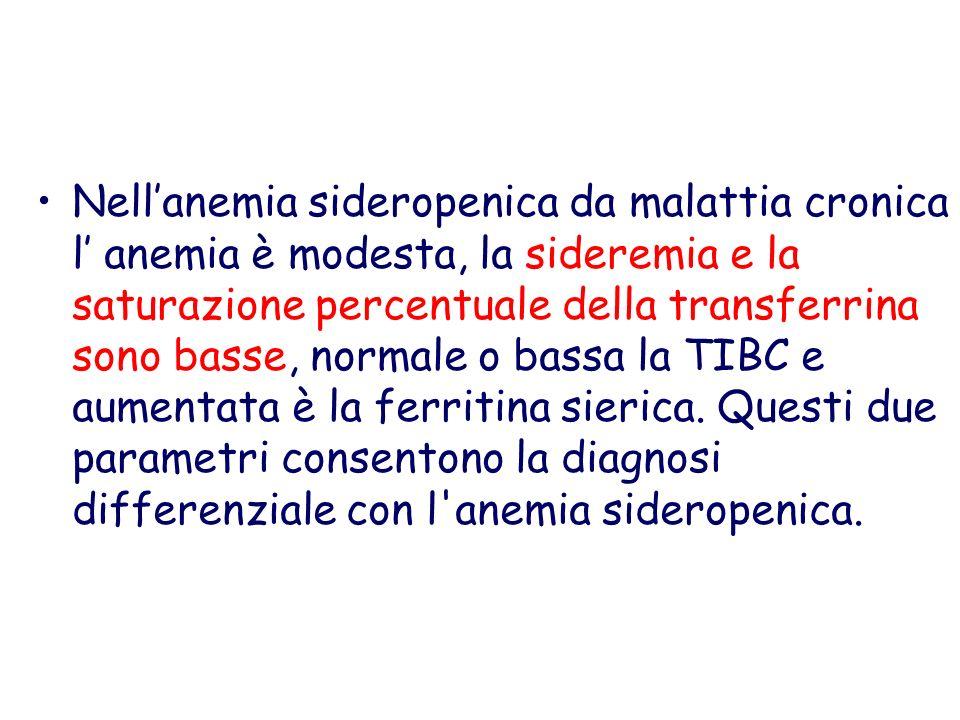 Nellanemia sideropenica da malattia cronica l anemia è modesta, la sideremia e la saturazione percentuale della transferrina sono basse, normale o bas