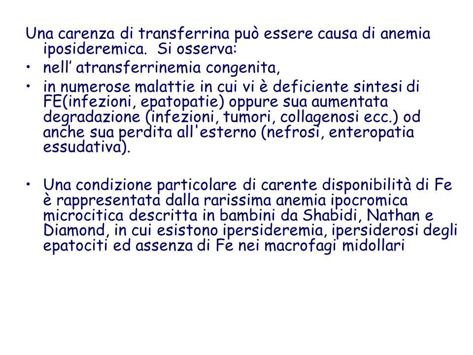 Una carenza di transferrina può essere causa di anemia iposideremica. Si osserva: nell atransferrinemia congenita, in numerose malattie in cui vi è de