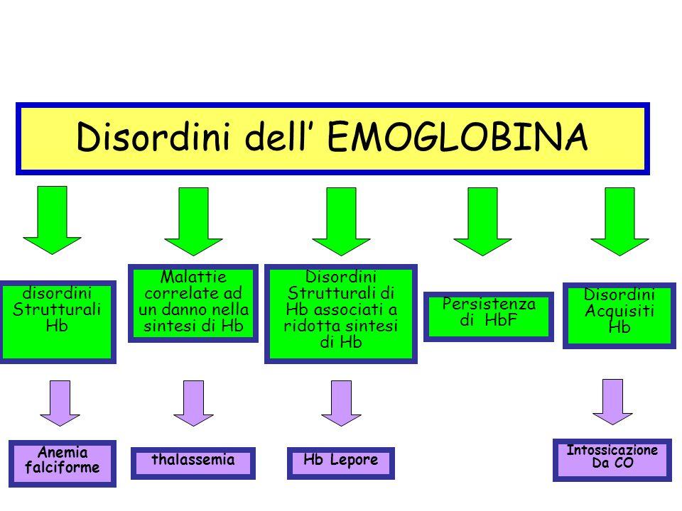 Beta talassemia: incidenza in Italia