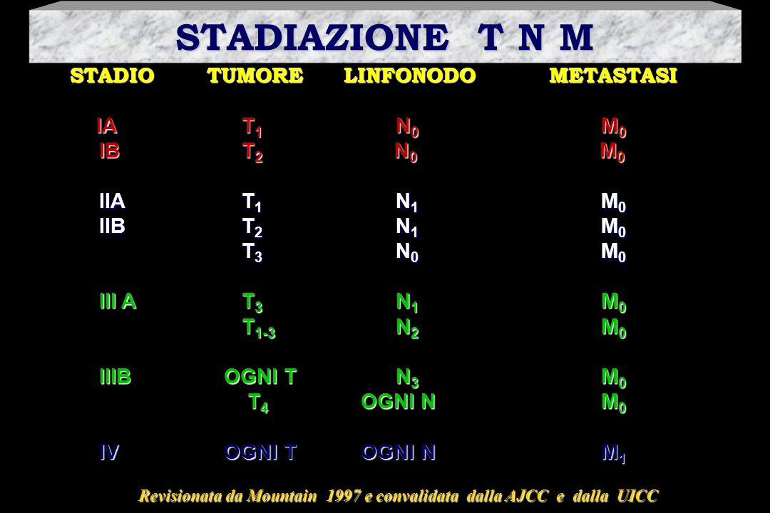 STADIOTUMORELINFONODO METASTASI IA T 1 N 0 M 0 IA T 1 N 0 M 0 IB T 2 N 0 M 0 IB T 2 N 0 M 0 IIA T 1 N 1 M 0 IIA T 1 N 1 M 0 IIB T 2 N 1 M 0 IIB T 2 N
