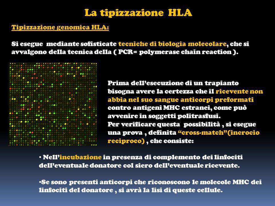 La tipizzazione HLA Tipizzazione genomica HLA: Si esegue mediante sofisticate tecniche di biologia molecolare, che si avvalgono della tecnica della (