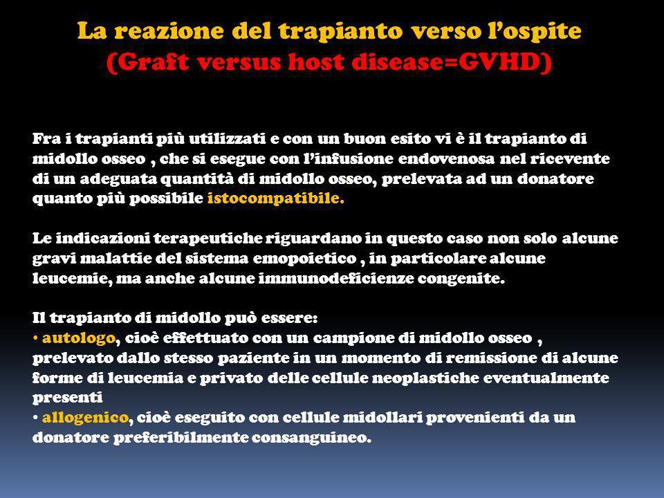 La reazione del trapianto verso lospite (Graft versus host disease=GVHD) Fra i trapianti più utilizzati e con un buon esito vi è il trapianto di midol