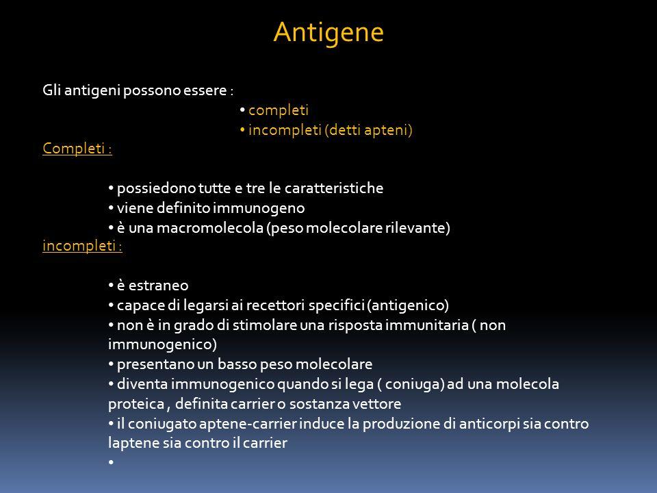 Gli antigeni possono essere : completi incompleti (detti apteni) Completi : possiedono tutte e tre le caratteristiche viene definito immunogeno è una