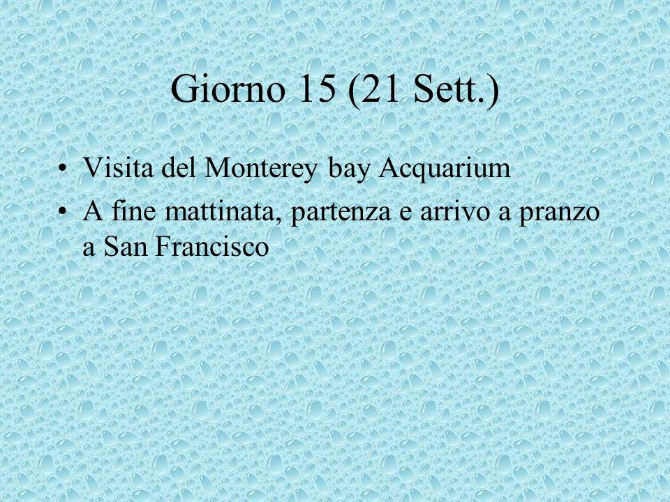 Giorno 15 (21 Sett.) Visita del Monterey bay Acquarium A fine mattinata, partenza e arrivo a pranzo a San Francisco