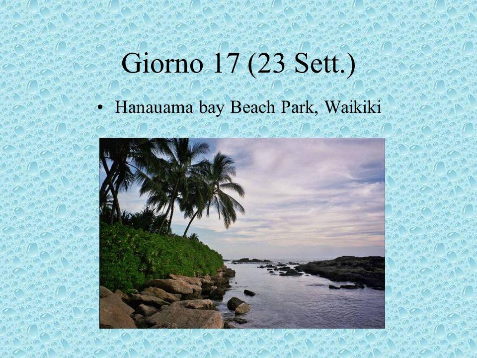 Giorno 17 (23 Sett.) Hanauama bay Beach Park, Waikiki