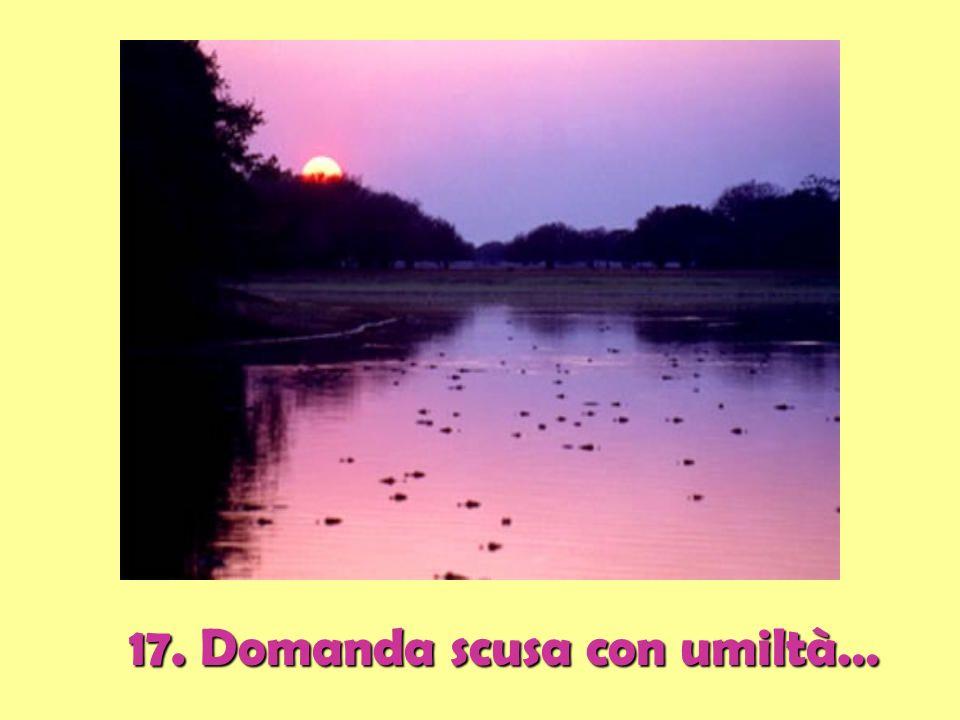 17. Domanda scusa con umiltà…