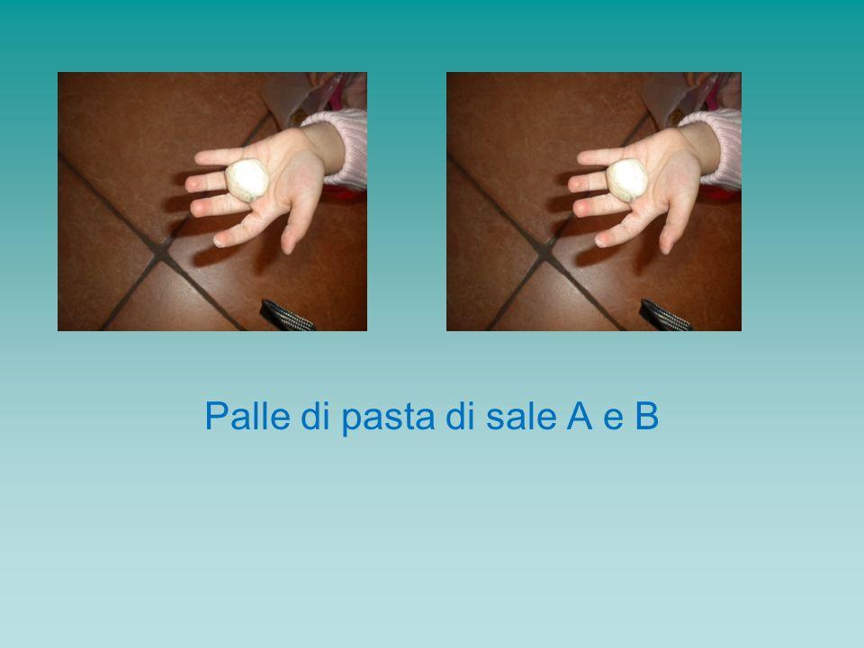 Poi, la palla B viene trasformata in una salsiccia (B1), e ai bambini viene chiesto se contiene più pasta di sale A o B1.