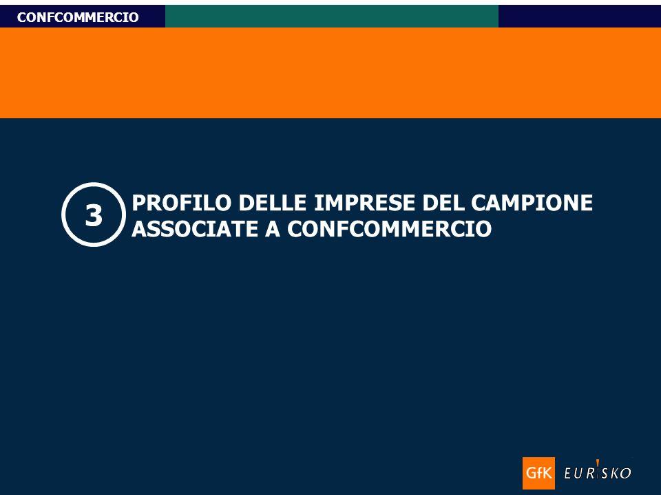 Titolo-Tahoma bold 11pt, Name-Tahoma italic 10pt Custom Research CONFCOMMERCIO PROFILO DELLE IMPRESE DEL CAMPIONE ASSOCIATE A CONFCOMMERCIO 3
