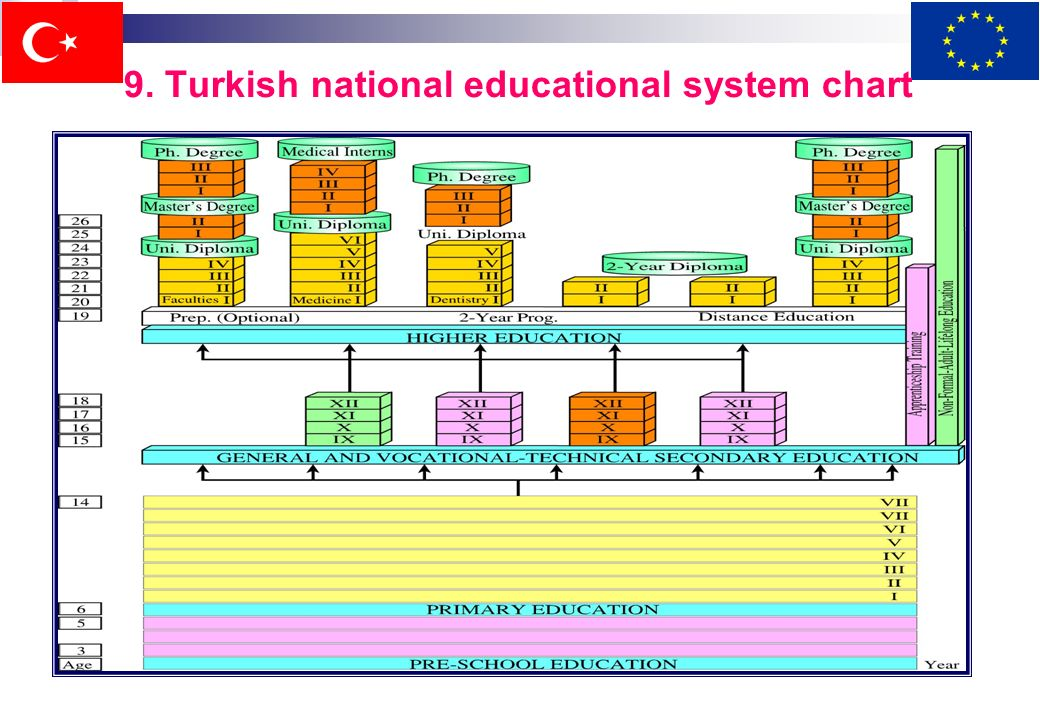 8.1.General structure of higher education