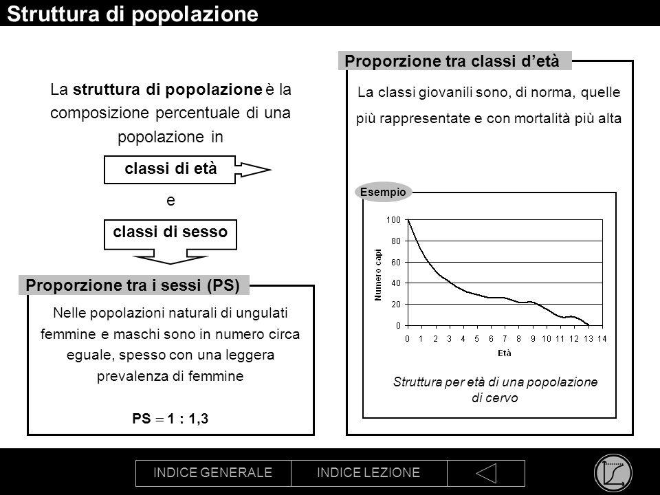 INDICE GENERALEINDICE LEZIONE Struttura di popolazione La struttura di popolazione è la composizione percentuale di una popolazione in classi di età e