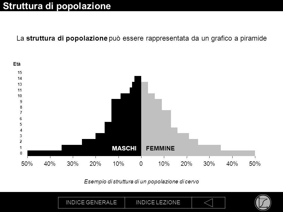 INDICE GENERALEINDICE LEZIONE Struttura di popolazione La struttura di popolazione può essere rappresentata da un grafico a piramide 50%40%30%20%10%0 20%30%40%50% 0 1 2 3 4 5 6 7 8 9 10 11 13 14 15 Età Esempio di struttura di un popolazione di cervo MASCHIFEMMINE