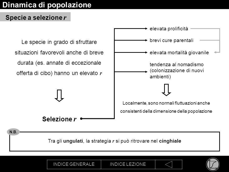 INDICE GENERALEINDICE LEZIONE Dinamica di popolazione Le specie in grado di sfruttare situazioni favorevoli anche di breve durata (es. annate di eccez