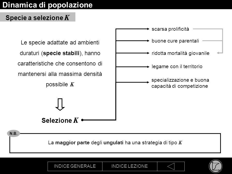 INDICE GENERALEINDICE LEZIONE Dinamica di popolazione Le specie adattate ad ambienti duraturi (specie stabili), hanno caratteristiche che consentono d