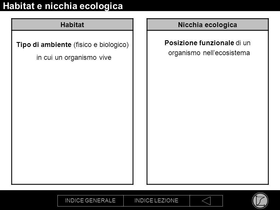 INDICE GENERALEINDICE LEZIONE Habitat e nicchia ecologica Habitat Tipo di ambiente (fisico e biologico) in cui un organismo vive Nicchia ecologica Pos