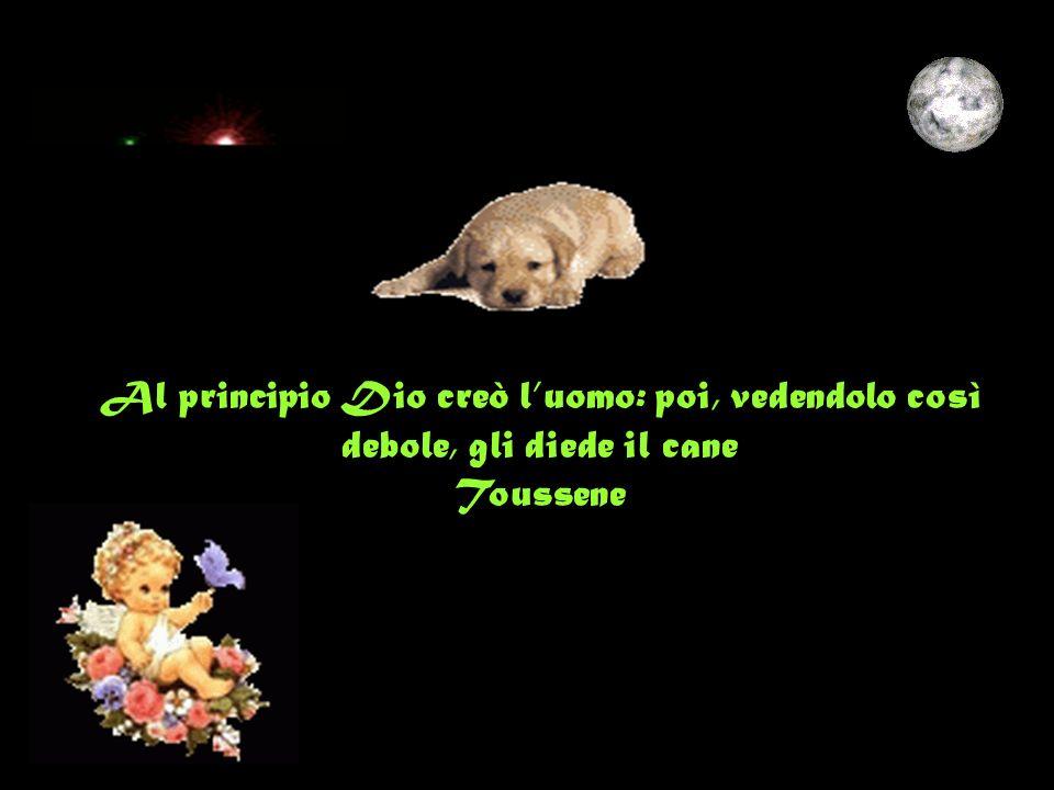 Al principio Dio creò luomo: poi, vedendolo così debole, gli diede il cane Toussene