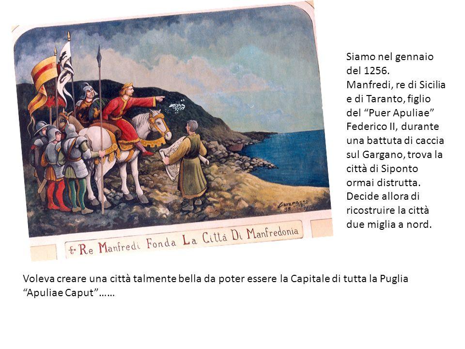 Siamo nel gennaio del 1256. Manfredi, re di Sicilia e di Taranto, figlio del Puer Apuliae Federico II, durante una battuta di caccia sul Gargano, trov