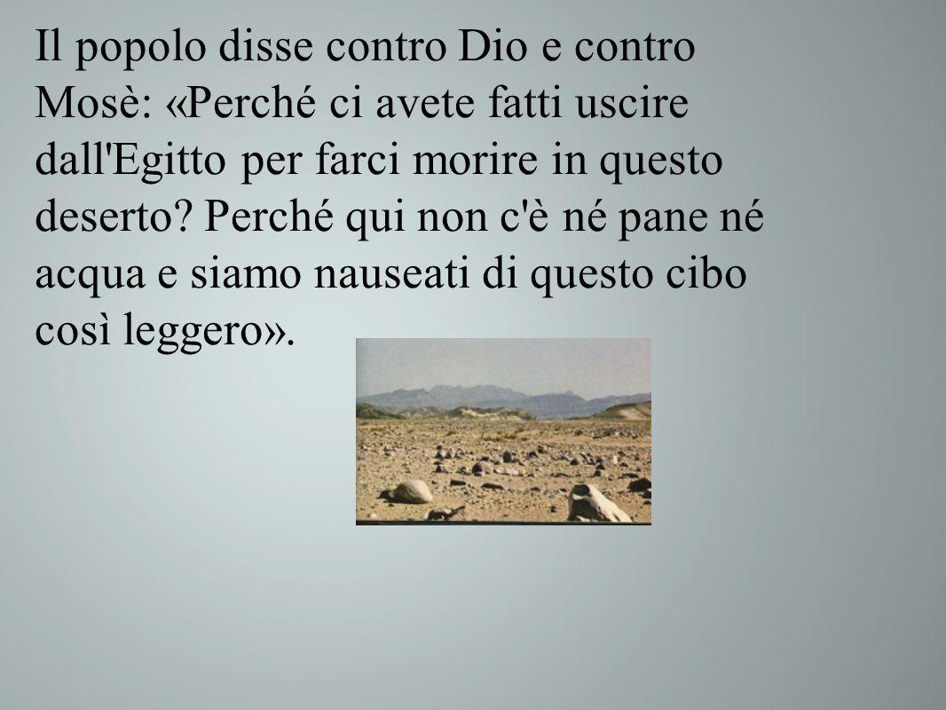 Il popolo disse contro Dio e contro Mosè: «Perché ci avete fatti uscire dall'Egitto per farci morire in questo deserto? Perché qui non c'è né pane né