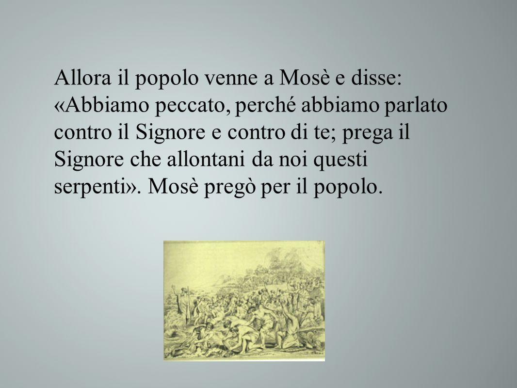 Allora il popolo venne a Mosè e disse: «Abbiamo peccato, perché abbiamo parlato contro il Signore e contro di te; prega il Signore che allontani da no