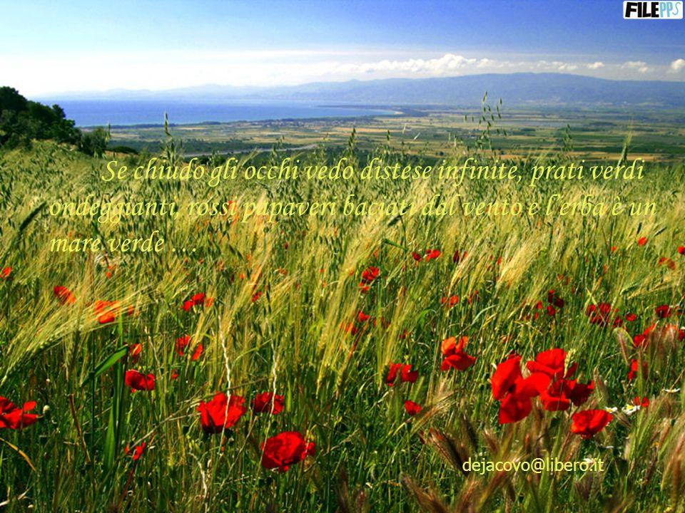 Non sono le parole che riempiono i nostri vuoti, ma gli affetti e le tenerezze di chi ci ama … dejacovo@libero.it