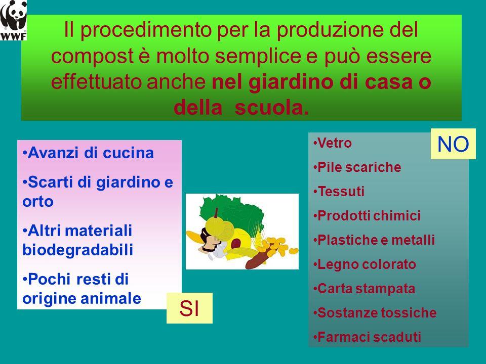 Il procedimento per la produzione del compost è molto semplice e può essere effettuato anche nel giardino di casa o della scuola. Avanzi di cucina Sca