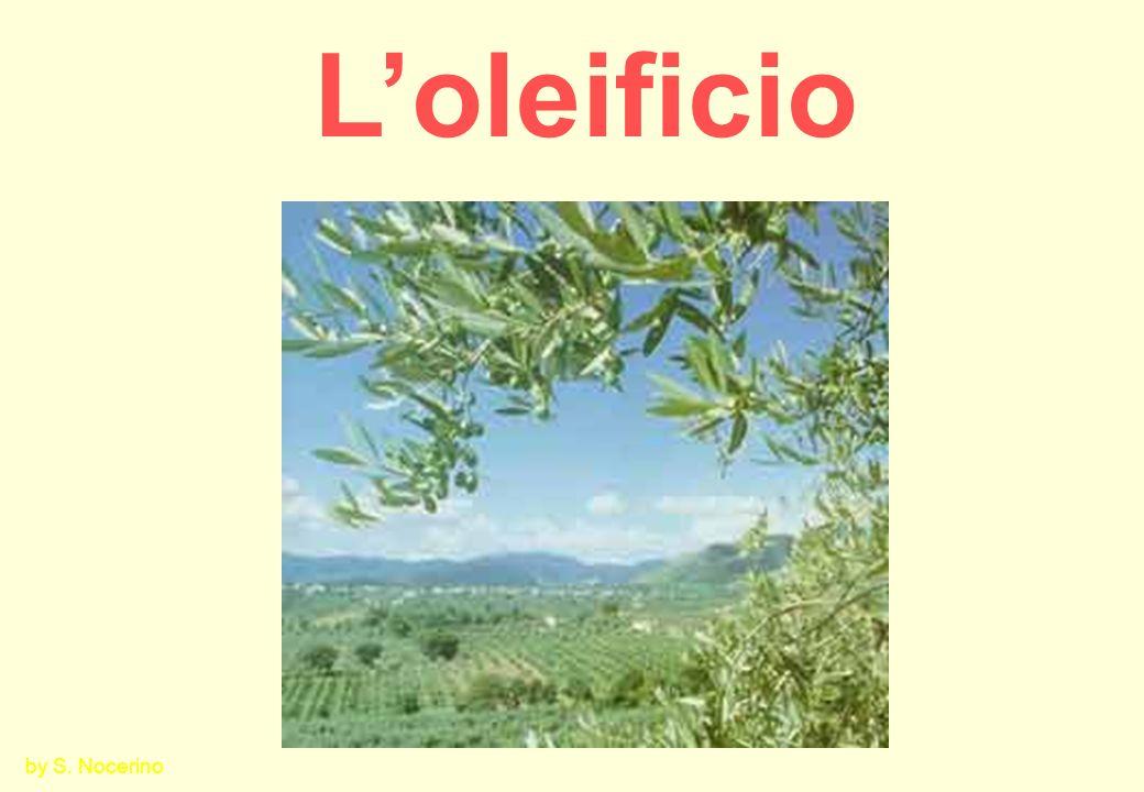 Classificazione degli oli doliva a)Oli vergini di oliva 1.Olio extra vergine doliva 2.Olio di oliva vergine 3.