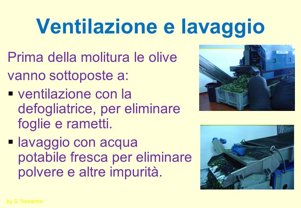 Ventilazione e lavaggio Prima della molitura le olive vanno sottoposte a: ventilazione con la defogliatrice, per eliminare foglie e rametti. lavaggio