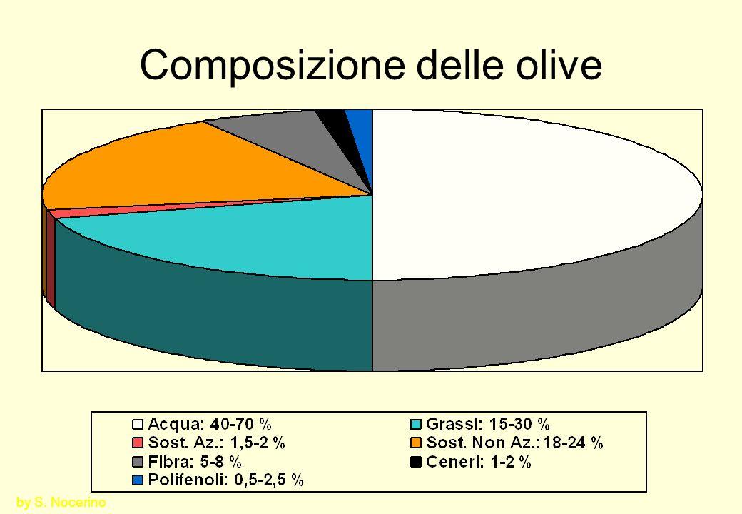 La raccolta delle olive È importante per la qualità dellolio.