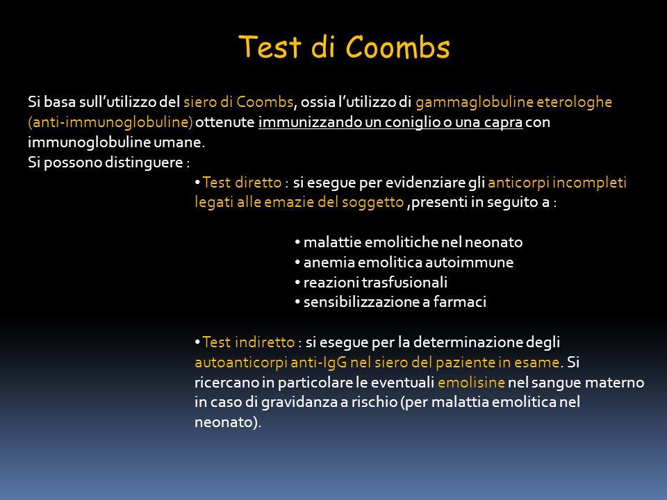 Test di Coombs Si basa sullutilizzo del siero di Coombs, ossia lutilizzo di gammaglobuline eterologhe (anti-immunoglobuline) ottenute immunizzando un