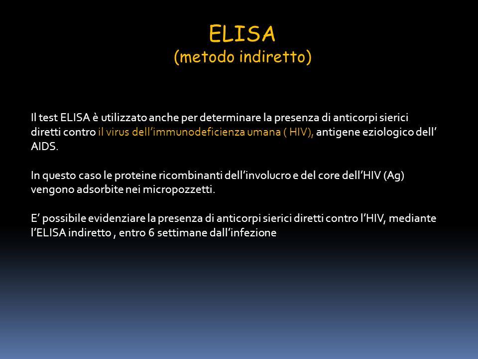 ELISA (metodo indiretto) Il test ELISA è utilizzato anche per determinare la presenza di anticorpi sierici diretti contro il virus dellimmunodeficienz