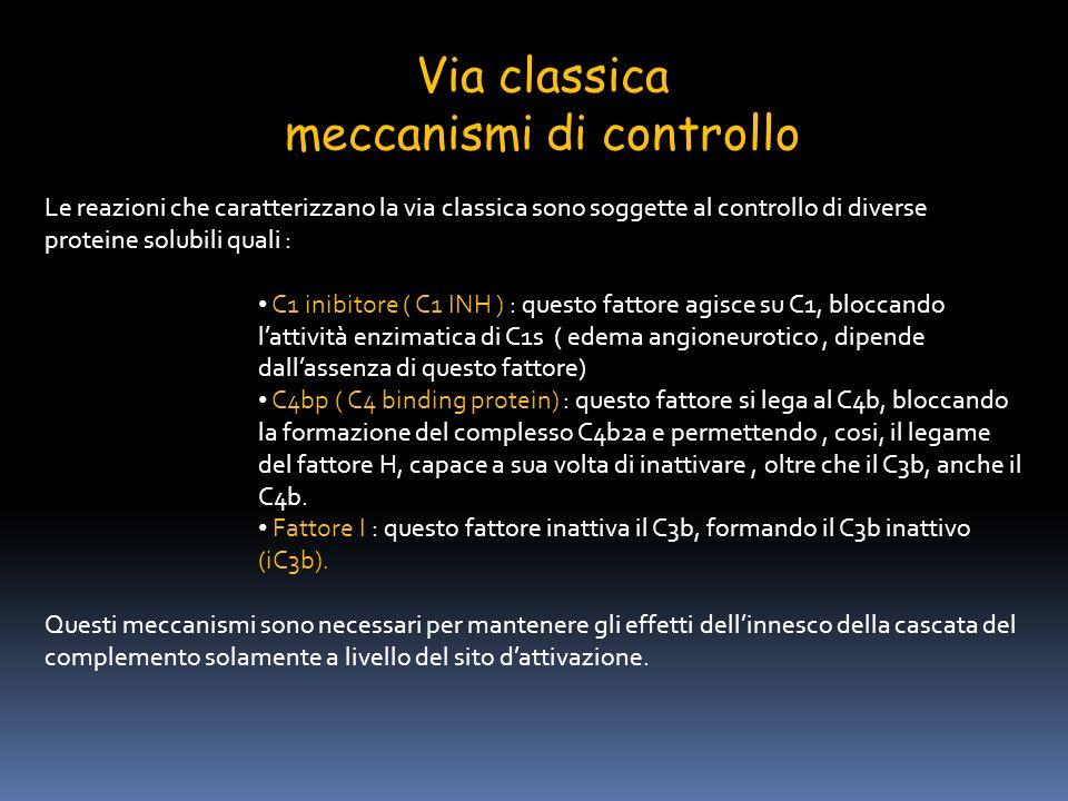Via classica meccanismi di controllo Le reazioni che caratterizzano la via classica sono soggette al controllo di diverse proteine solubili quali : C1