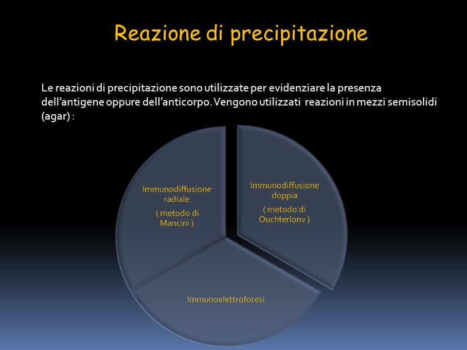 Reazione di precipitazione Le reazioni di precipitazione sono utilizzate per evidenziare la presenza dellantigene oppure dellanticorpo. Vengono utiliz